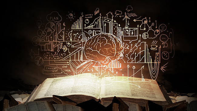 story-brain-blog image